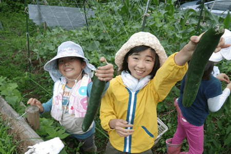Children engaged in activities