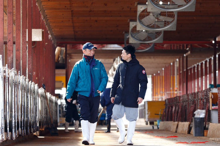 Mr. Hoshi and Mr. Ando met at an agricultural event and have since become firm friends in the course of trialing Ricoh CowTalk.