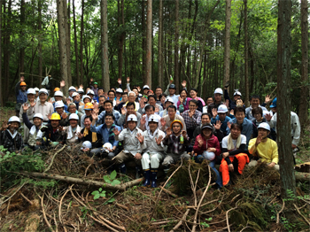 image:Forest management volunteer activity