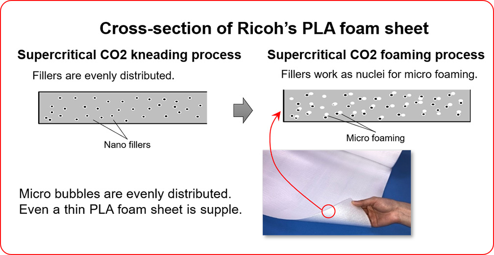 Cross-section of Ricoh's PLA sheet
