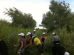 image:Spain: Employees participating in conservation initiatives for the protected area in the natural park