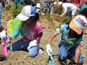image:Japan: Children planting trees in areas working to rebuild local communities affected by the 2011 disaster